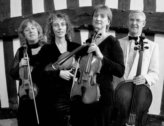belvoir strings