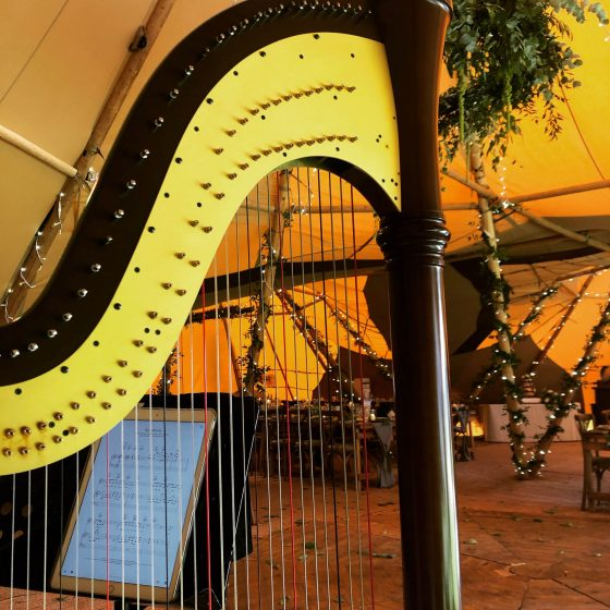 Harp in marquee
