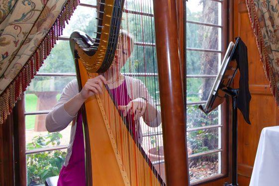 Cambridge Harpist