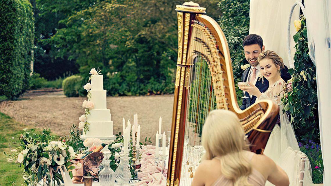 Leicester Harpist - Background music