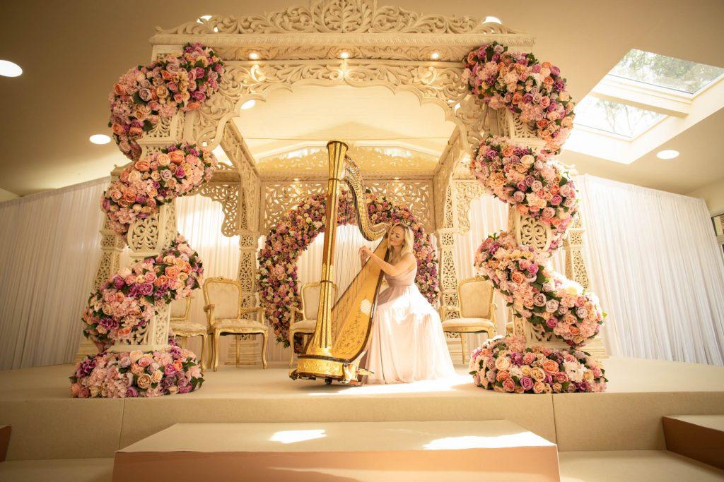 Leicester Harpist