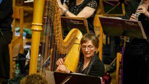 Lincolnshire Harpist for Hire