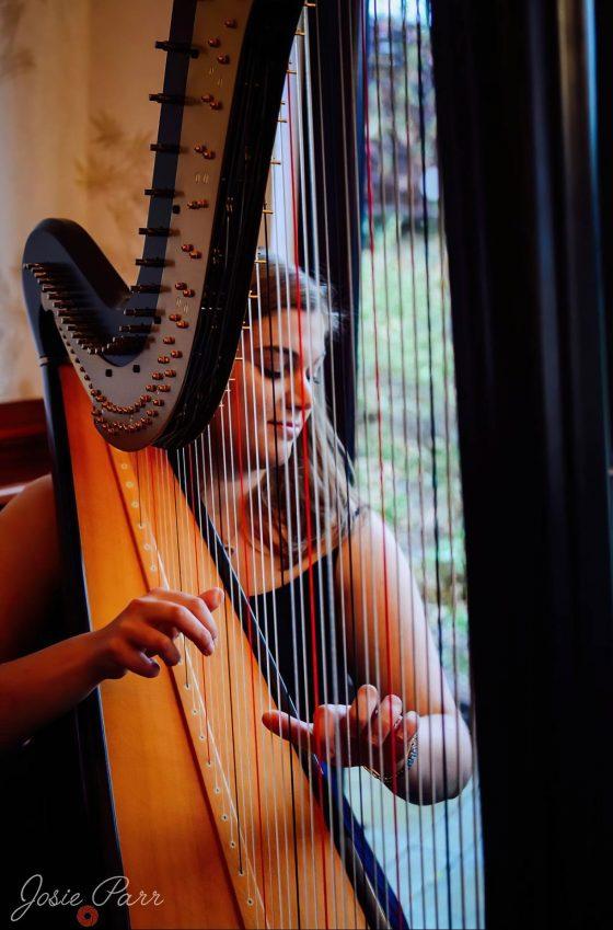 Rutland Harpist for Hire (photo Josie Parr)