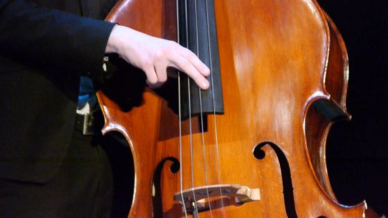 The Jazz Collective Band - Doubele Bass